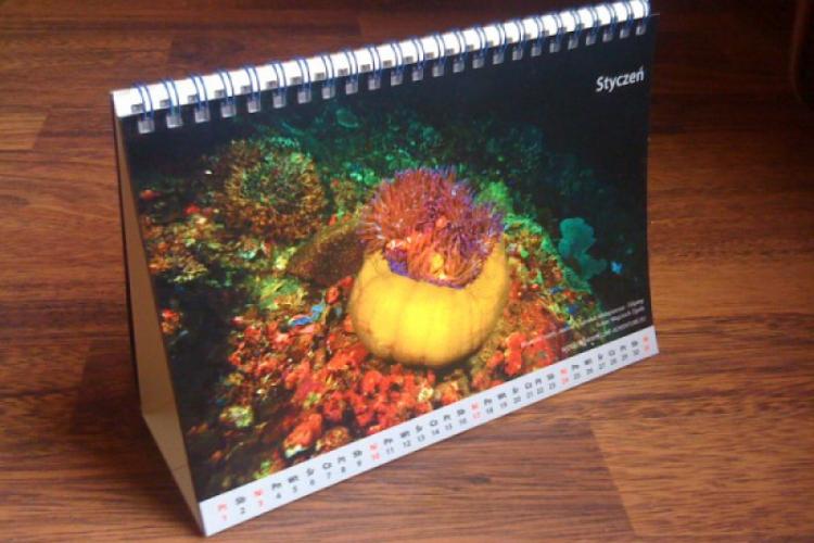 Kalendarz stojący - Podwodne tajemnice