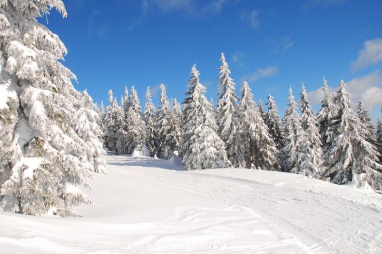 Zimowej aury wspomnienie …