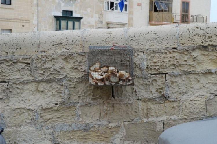 Metalowy kosz na niepotrzebny chleb
