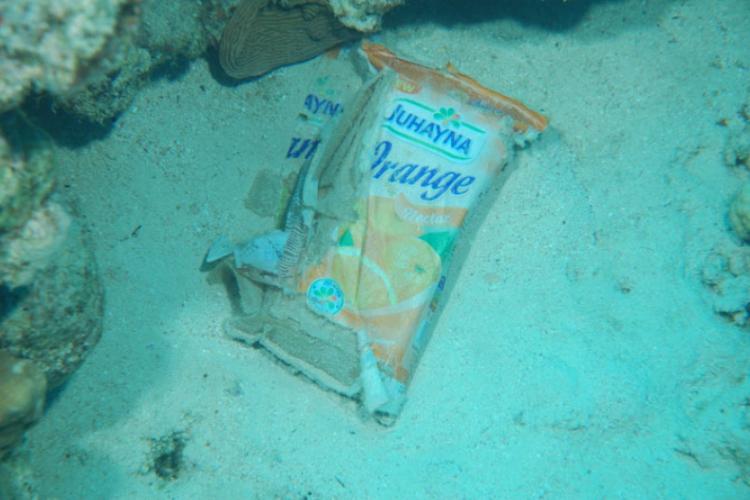Śmieci w prądzie morskim