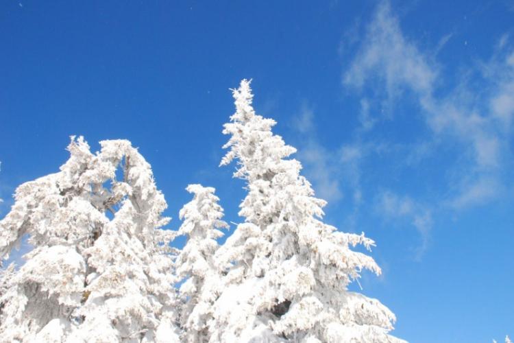Zimowej aury wspomnienie…