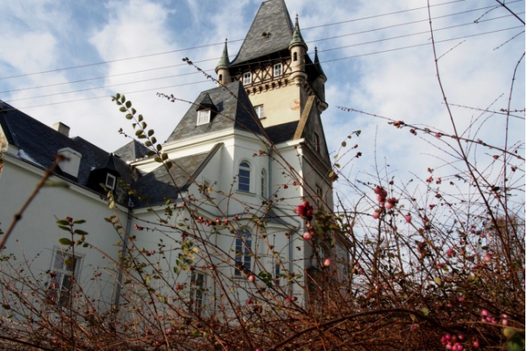 Miejsce noclegu - Pałac Osowa Sień - Festiwalowe szaleństwo