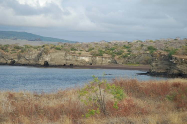 Wybrzeże wyspy Galapagos