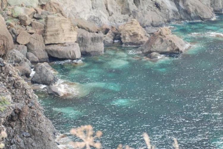 Część wybrzeża