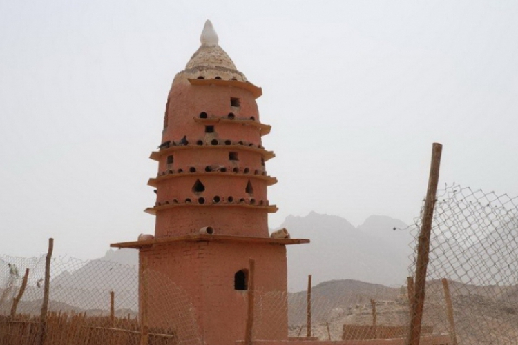 Gołębnik Beduinów na pustyni