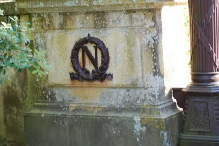 Znak firmowy Napoleona