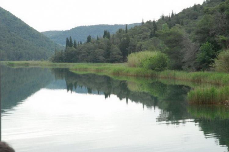 Woda, lasy i zwierzęta
