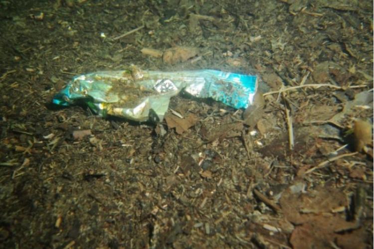 Śmieci w polskich jeziorach