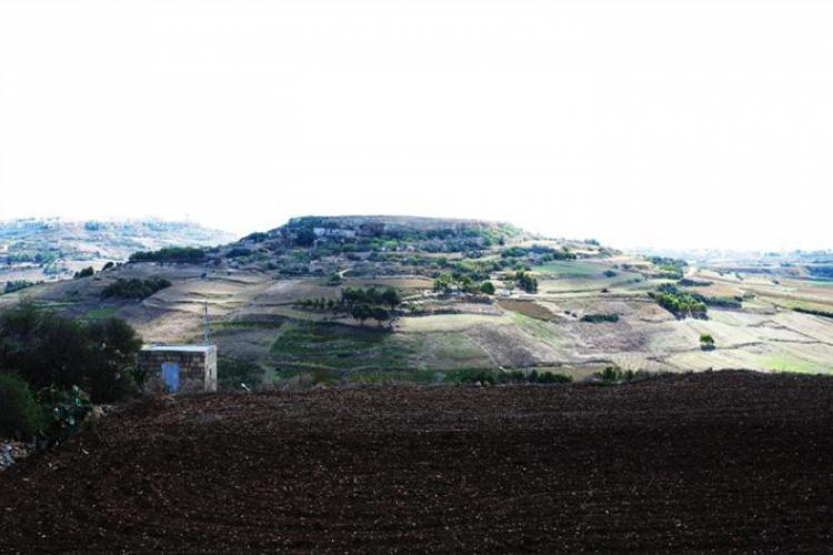 Pagórki na Gozo