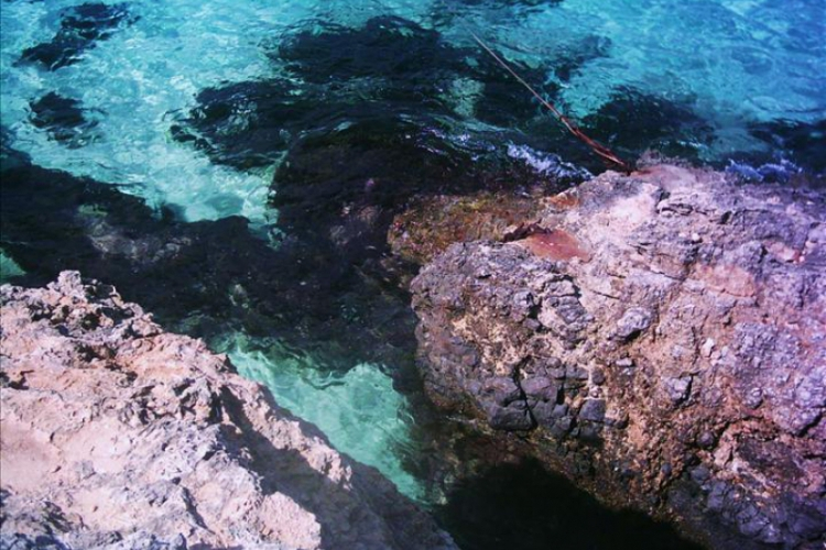 Widać dno - Błękitna Laguna