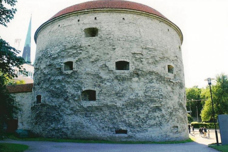 Gruba Małgorzata