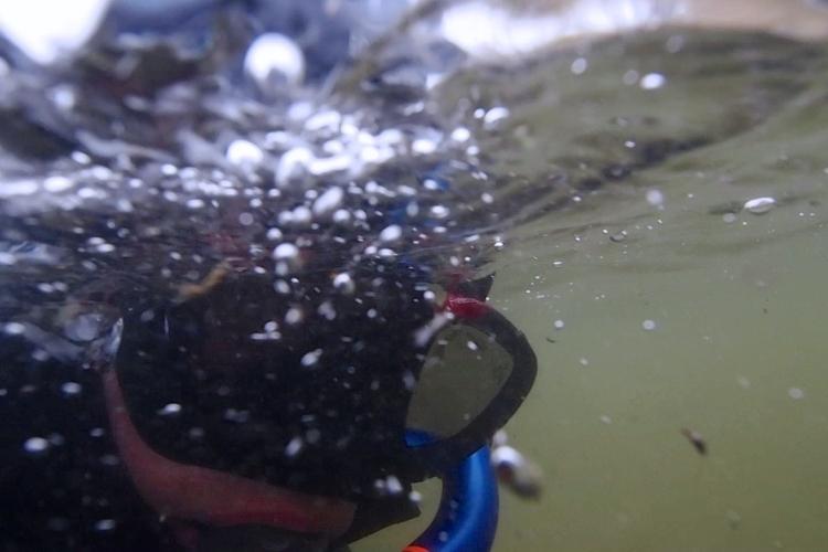 Pierwsze nurkowanie